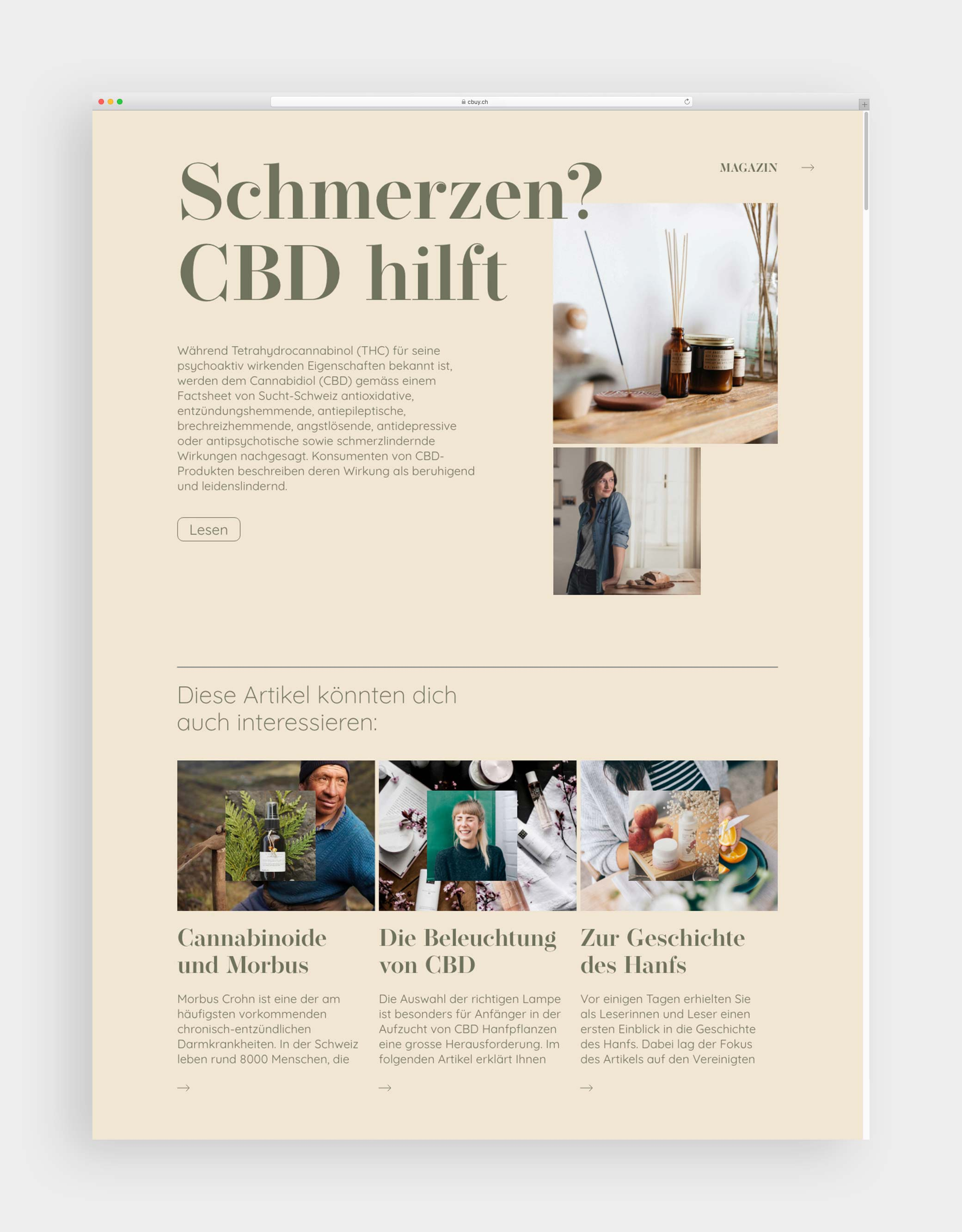 cbuy_website_magazin_mockup